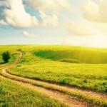 ws_Cloudy_Sky_Field_&_Path_2560x1600